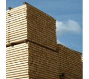 Softwood Treated Battens